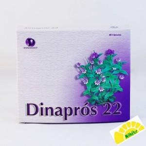 DINAPROS 22 MAHEN