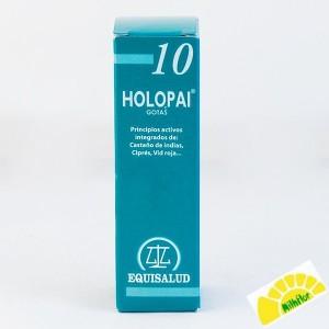 PAI 10 HOLOPAI CIRCULACION...