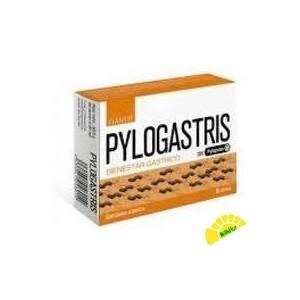 PYLOGASTRIS
