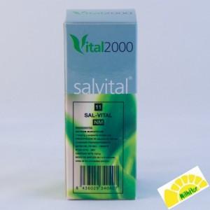 SALVITAL 11  NATRUM MURIATI
