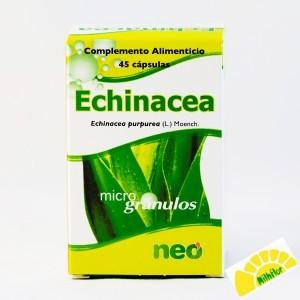 ECHINACEA NEO